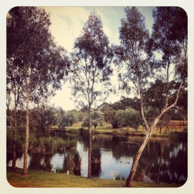 River Torrens Bonython Park